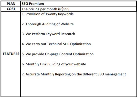 seo premium pricing